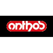 Anthos (3)